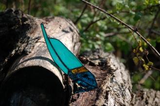 // mountain bluebird