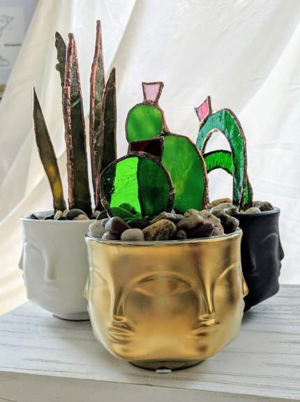// face planter collection