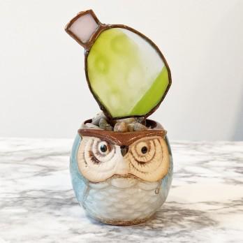// mini owl planter